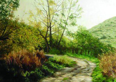 Camino en Sedano (2016)